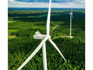 Почему неодимовые магниты так важны для зеленой энергетики
